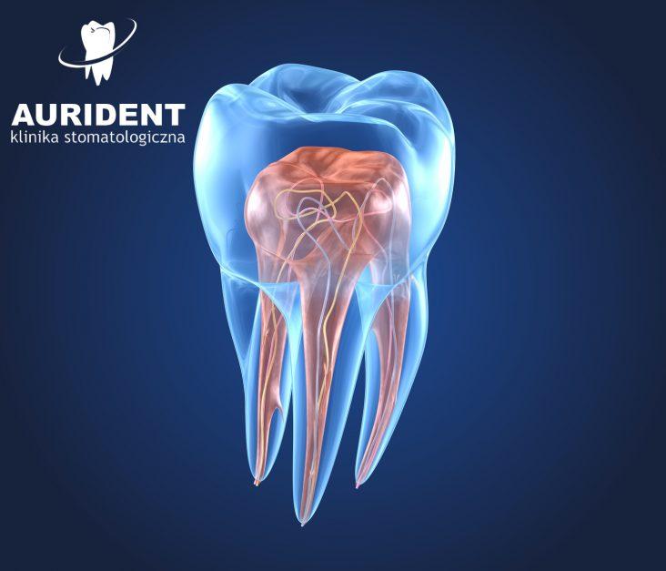 Endodoncja - ostatnia szansa na uratowanie zęba!