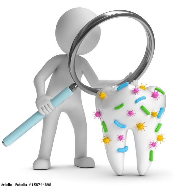 dentysta kontra bakterie